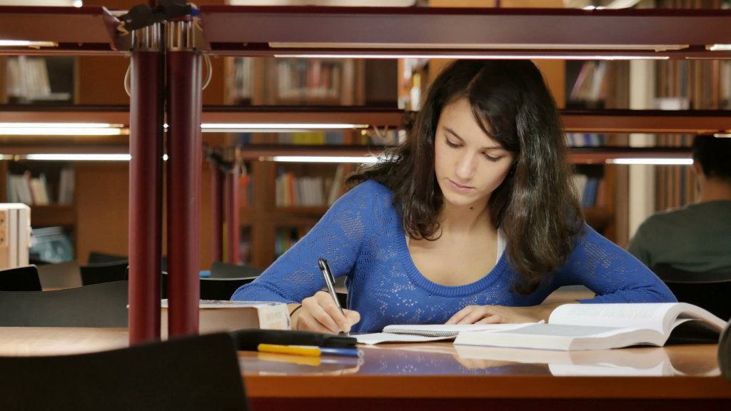 Essay contests 2011 for high school students